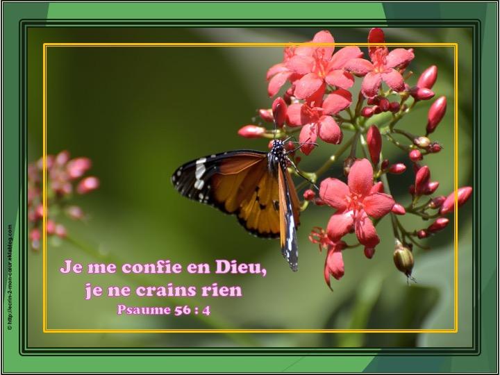 Je me confie en Dieu - Psaumes 56 : 4