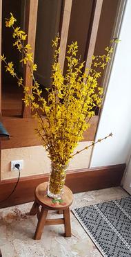 A chaque mois son bouquet