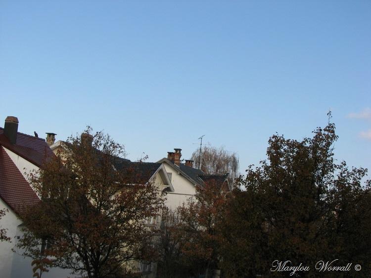 Ciel d'Alsace 442