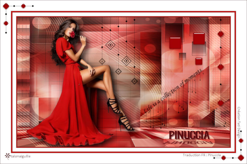 *** Pinuccia ***