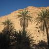 Maroc Bivouac Tissint