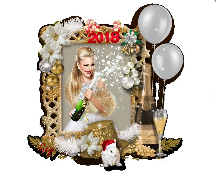 Mes meilleurs voeux 2018 à vous tous et toutes.