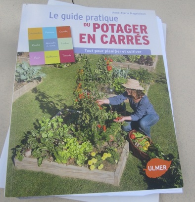 Le potager en rectangles