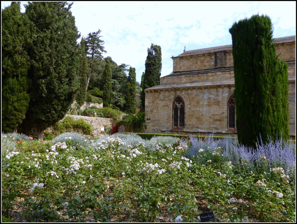 L'Abbaye de Fontfroide ( Aude )  : N°5 Roseraie et Jardins.