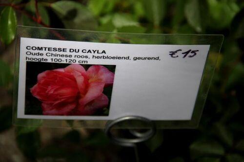 La Feuillerie - Printemps 2017 (1/2)