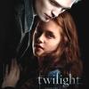 Affiche française Twilight
