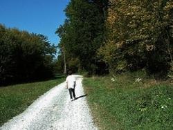 Limousin : Saint Paul 87, La randonnée du « sentier du Menhir » .