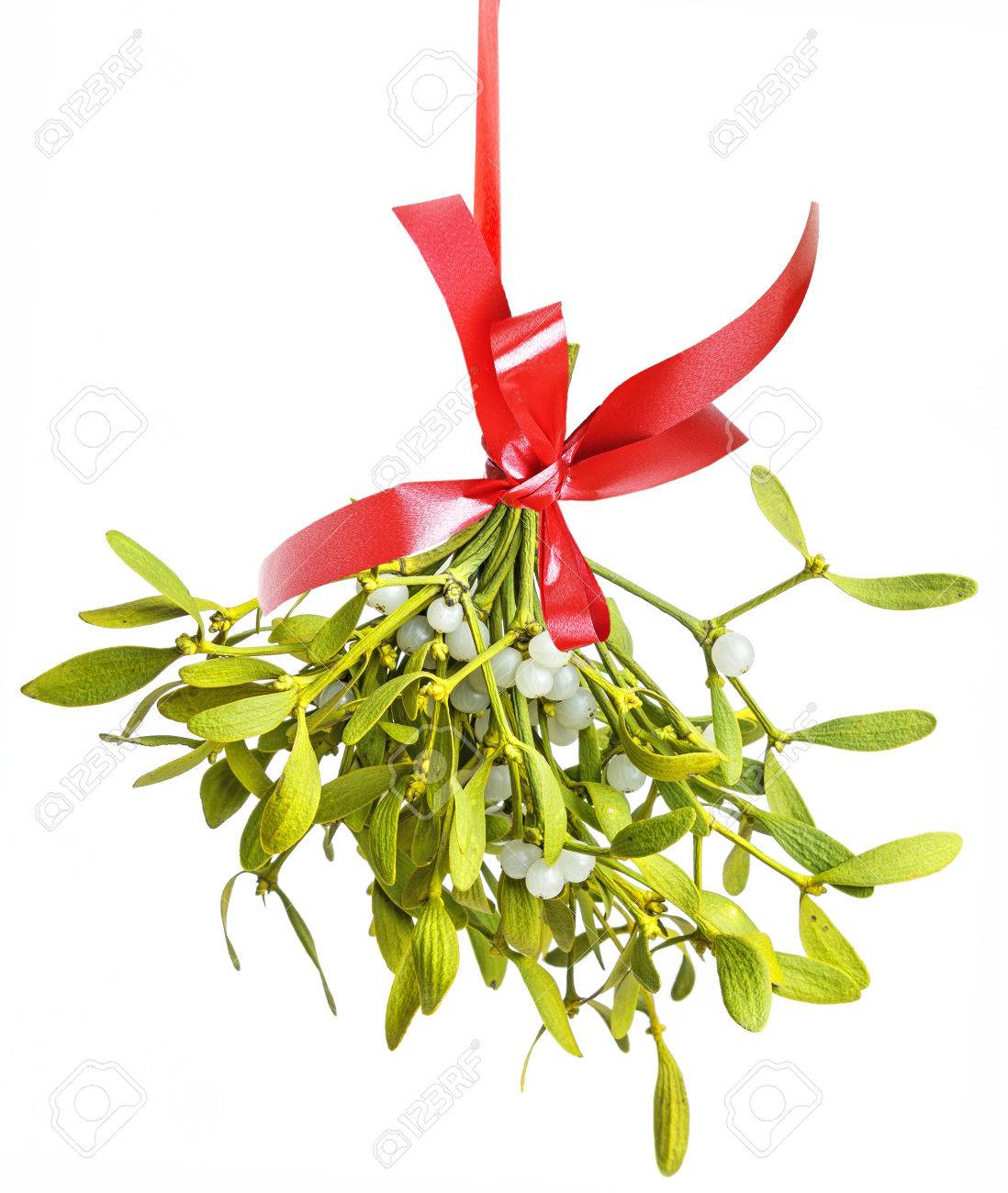 mistletoe isolated on a white background Banque d'images - 33126289