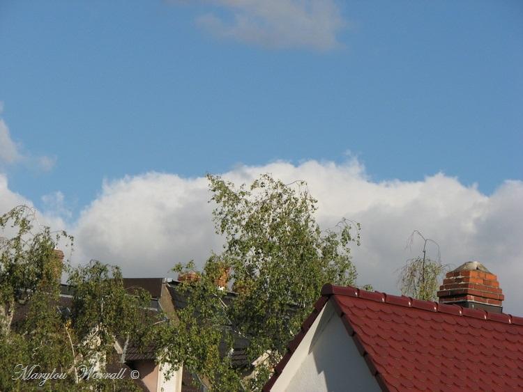Ciel d'Alsace 382