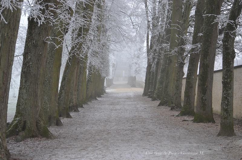 """Pollution : de la neige """"industrielle"""" blanchit certaines régions"""