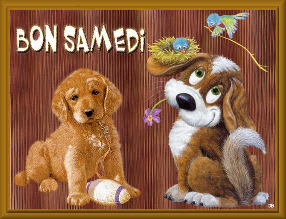 Bon week-end mes ami(e)s !