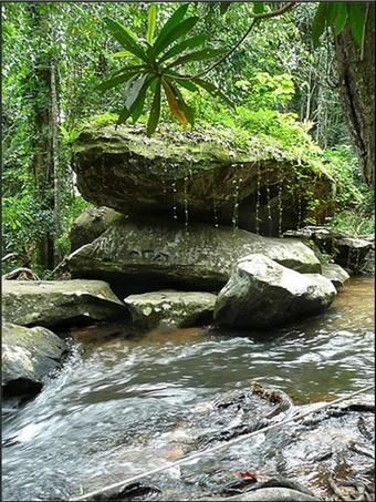 Rivière sacrée d'Angkor