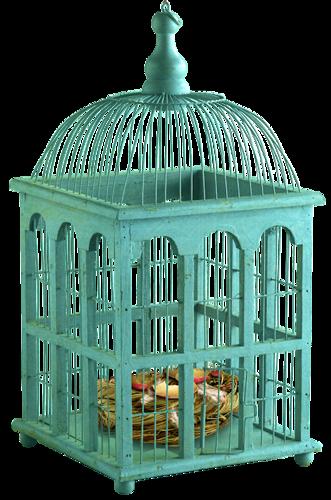 Cages à Oiseaux Série 2