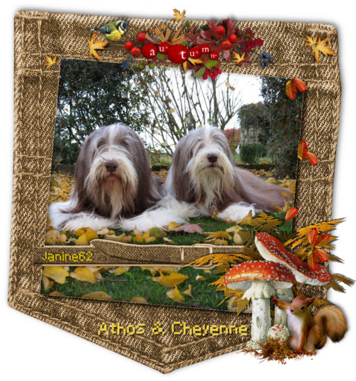 ♥Bonne semaine d' Athos & Cheyenne♥