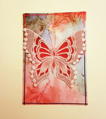 Echange papillons n°6