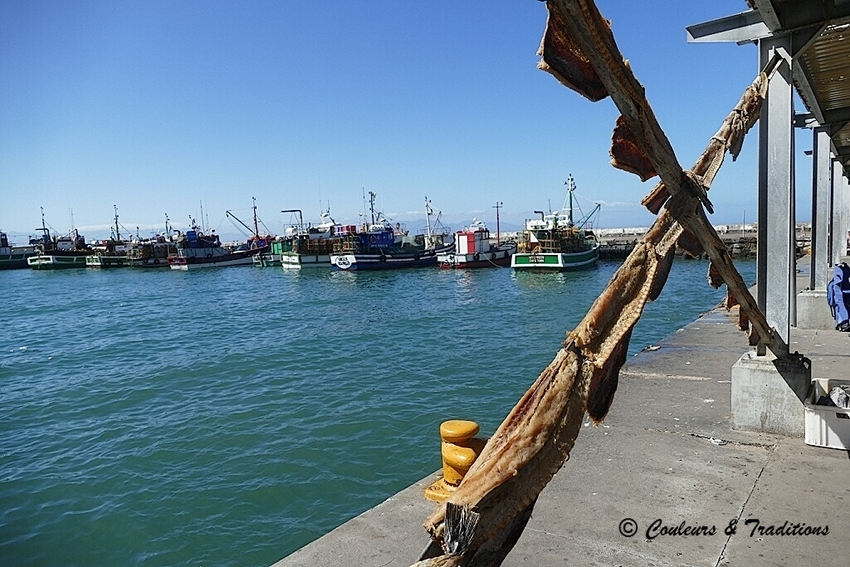 Le port de Kalk Bay