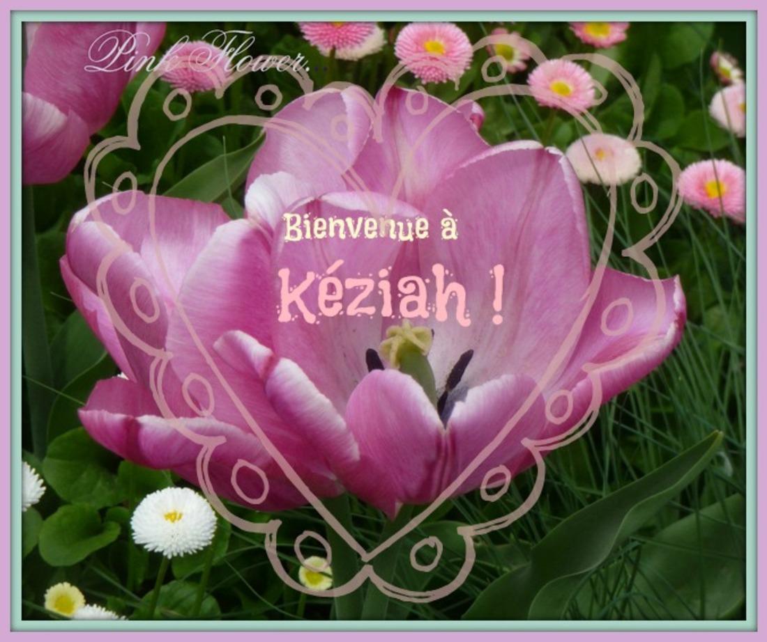 Bienvenue à Kéziah !