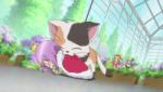 ♪ Shugo Chara ! Doki ! ♪