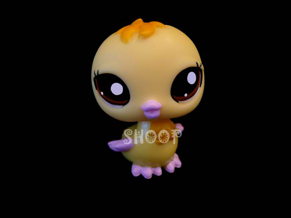 LPS 2082
