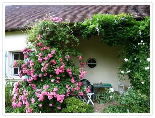 Le jardin de La Petite Rochelle