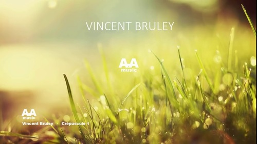 BRULEY, Vincent - Gardens of Africa  (Belles musiques africaines)