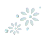 Stickers d'ongles marguerites blanches en duo et strass