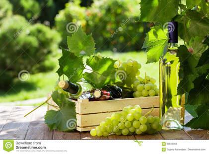 Le coucou du vendredi, haïku, senryû, thème, le raisin...