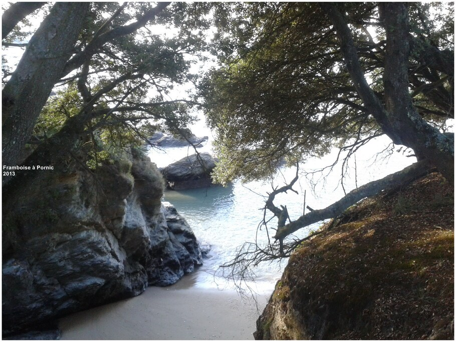 Pornic, côte bretonne du Pays de Retz