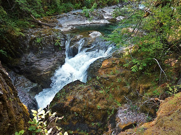 Jour 25 Little Qualicum Falls 1