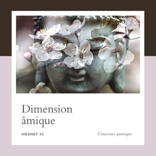 Schéma Mesnetien + dimension âmique