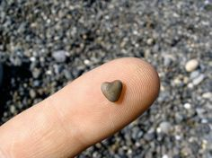 """Hearts in Nature: A Valentine's Day Scavenger Hunt! Great idea for the kiddos :) """"When you figure out love is all that matters after all, it sure makes everything else seem so small..."""""""