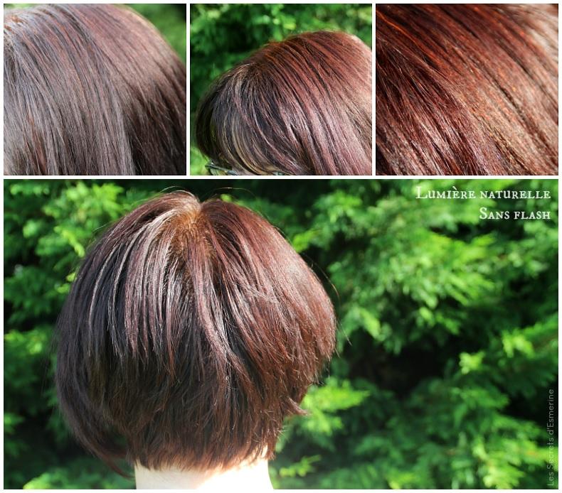 nuances de violine à vos cheveux - henné yémen + red kamala + baies de sureau