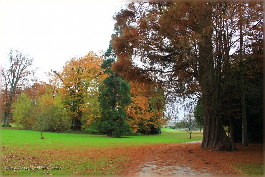 Meise, Jardin botanique, automne