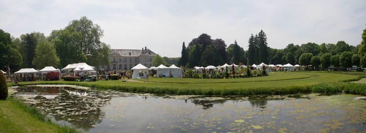 Abbaye de Chaalis. Fête des roses 2013