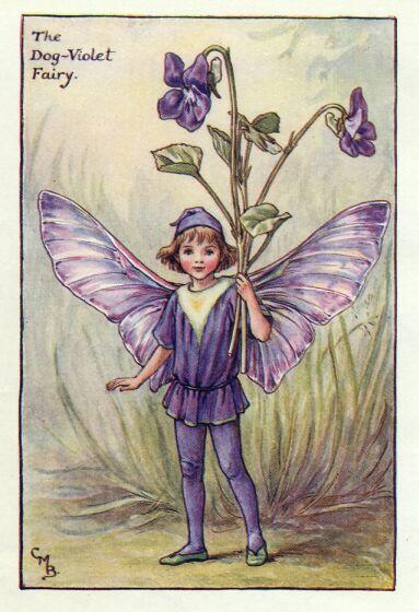 """""""secrets de violettes"""" ..."""