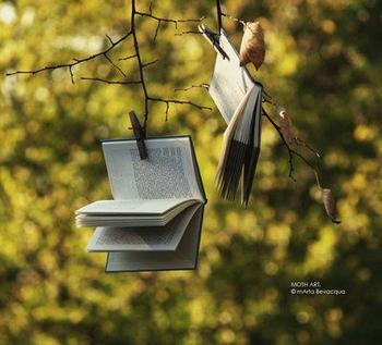 livre feuilles