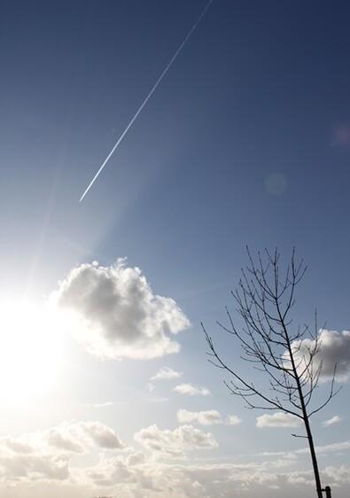 Du côté de Pontrieux (22) fév.2012 148