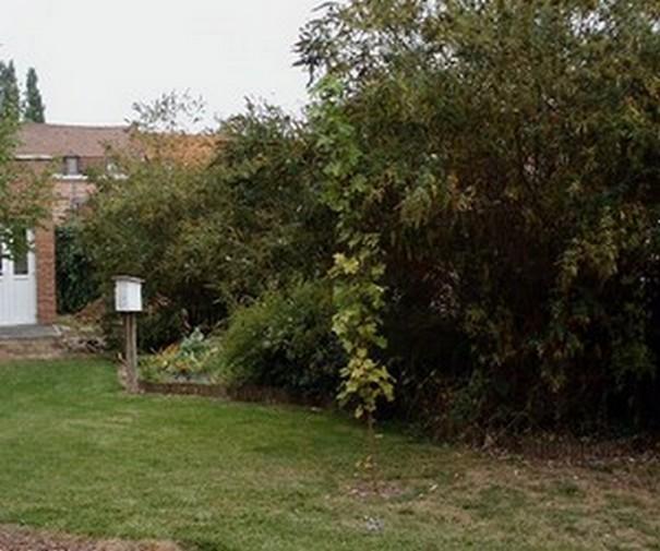 Evolution du jardin installation d 39 un potager le blog for Jardin lamartine