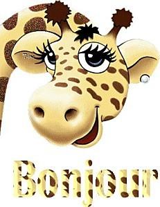 bonjour girafe 1