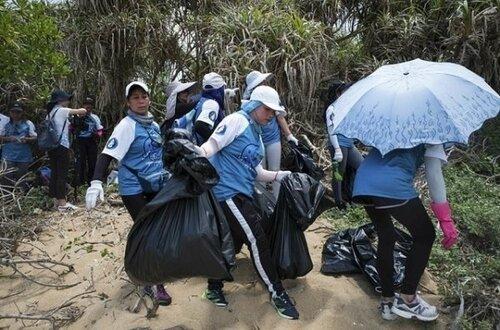 Ils nettoient la plage pour les tortues