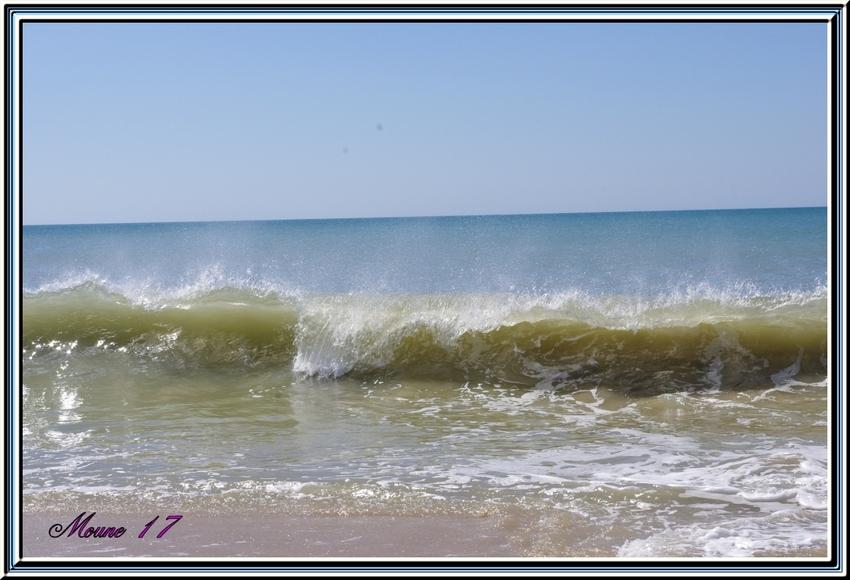"""Dimanche 1er septembre  pique nique et balade sur la plage """" les seulières  sur l'île d'Oléron                                                                de sur l'île d'Oléron"""