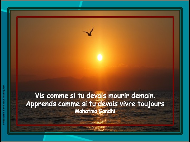 Vis et apprends
