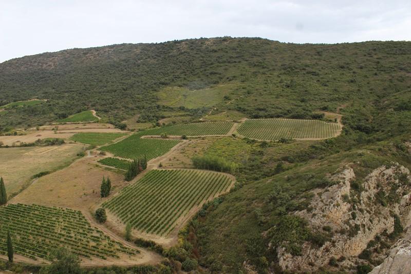 Cucugnan-Paysage