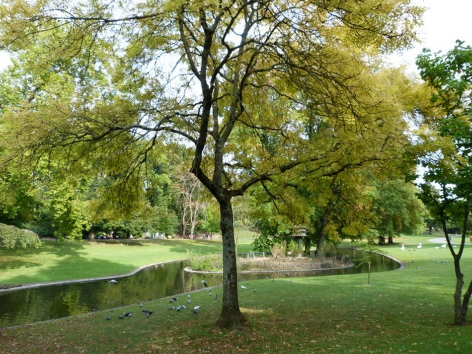 Quelques instants au parc