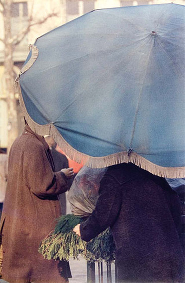 22 - Parapluies et parasols in the world
