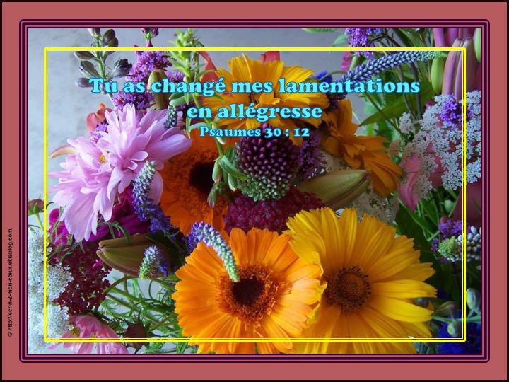 Tu as changé mes lamentations en allégresse - Psaumes 30 : 12