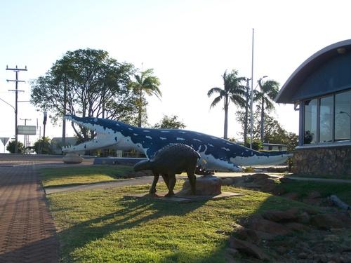 Kiwi s'acclimate à son nouveau pays
