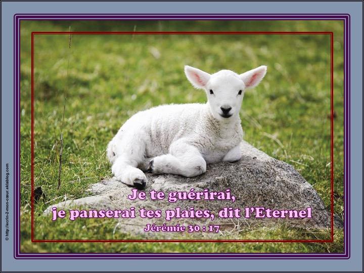 Je te guérirai - Jérémie 30 : 17