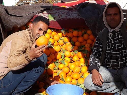 Notre vendeur d'oranges qui pose...4dh le kg