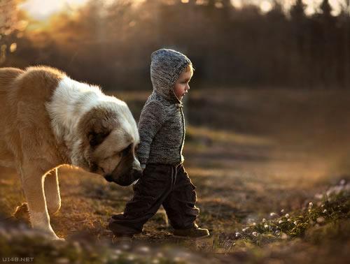 Les chiens qui protègent les enfants.(Série 3 de 4 articles)